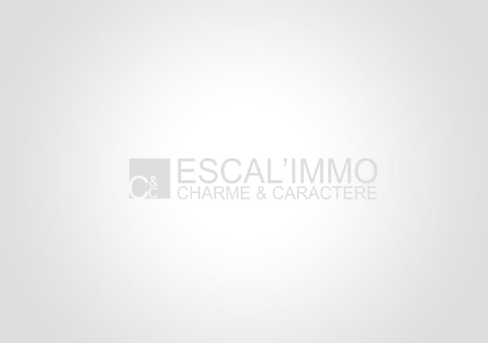 A vendre Montauban 820024252 Escal'immo charme & caractère